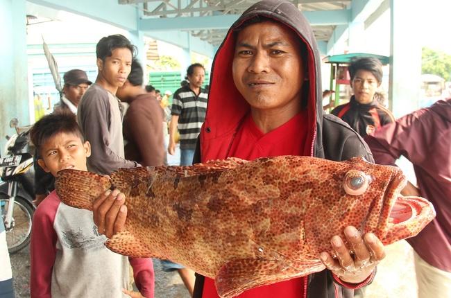 Fischmarkt in Makassar (Sulawesi)