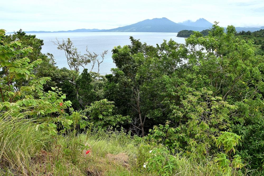 09 Blick vom Hausberg des Pulisan Resorts auf die Vulkankegel des Tangkoko Dua Saudara