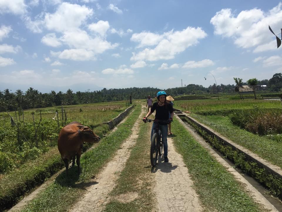 Bike Tour Bali