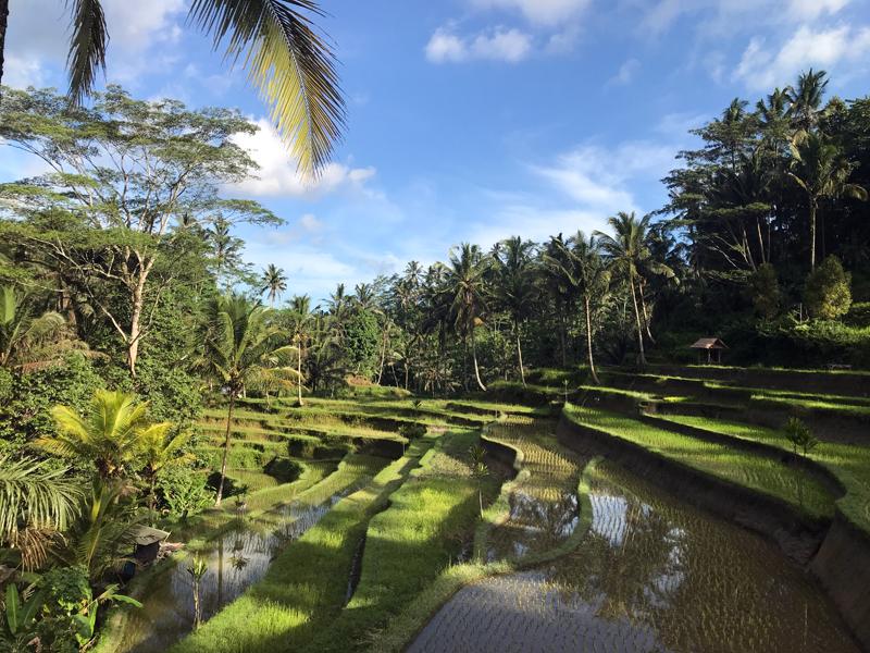 Bali-Tipps-5-Tage
