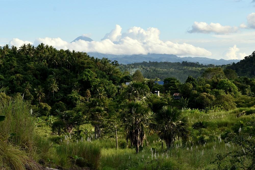 30 Blickfang - der Gunung Klabat