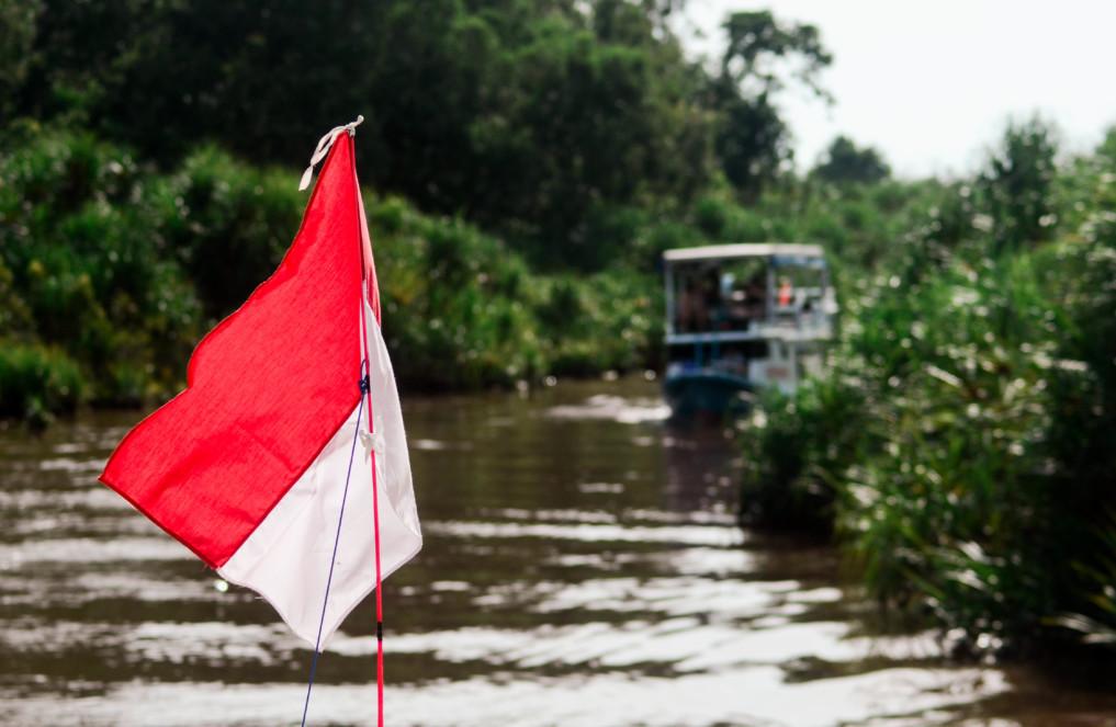 Magie Pur im Tanjung Puting Nationalpark