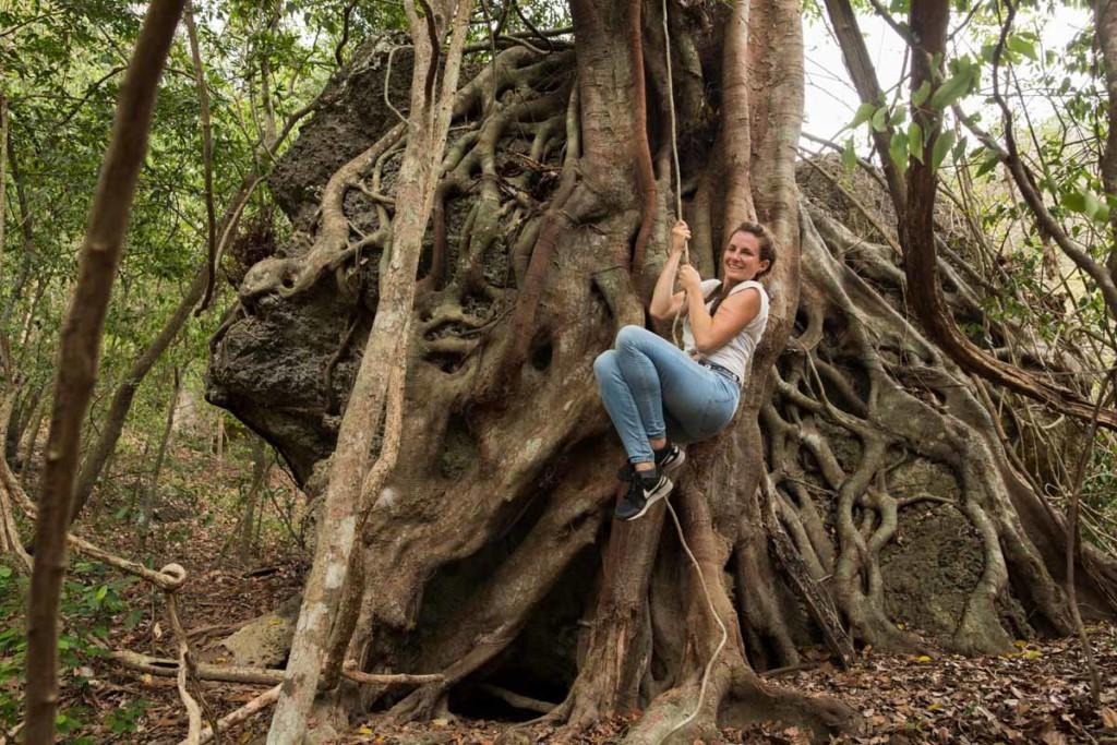 Bali-Barat-Nationalpark-5