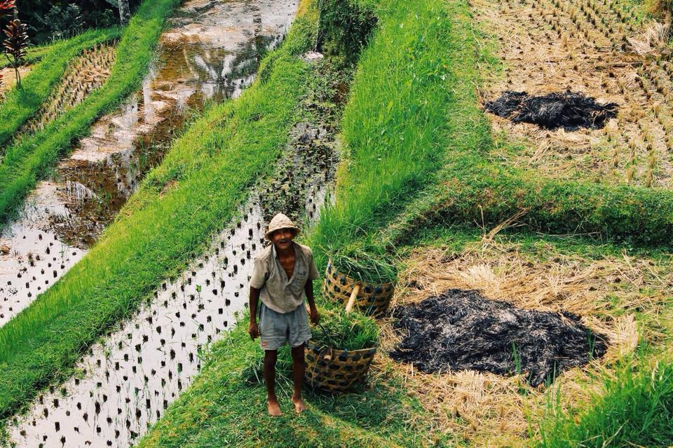 Bali Ubub Lisa Hu