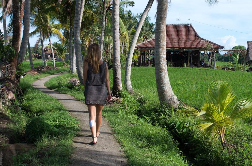 Bali Ubud Walk of Fame