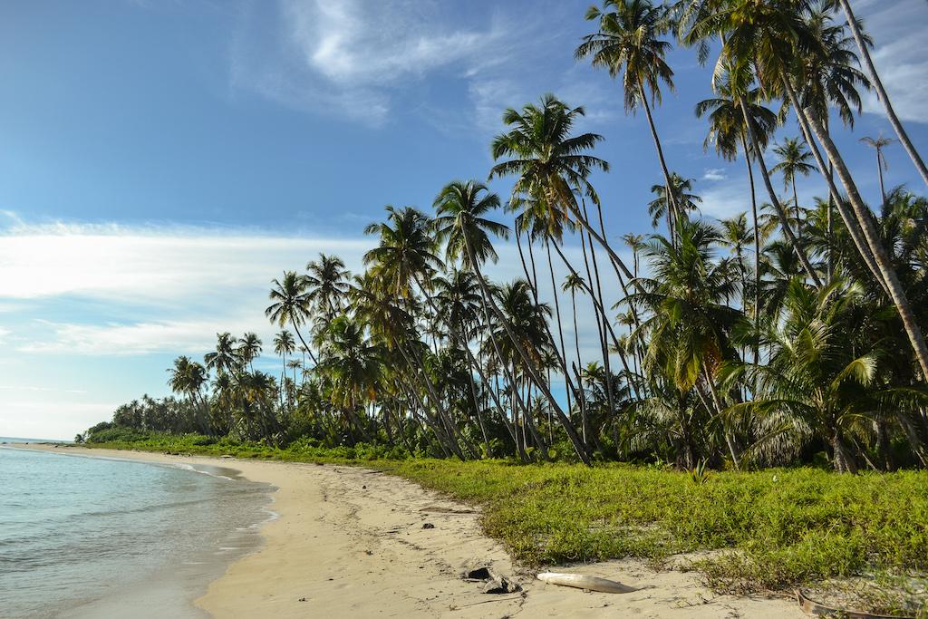 Banyak-Islands-Palmen-strand