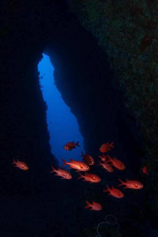 Cave_Diving_2_Sea_Souls_Dive_Resort