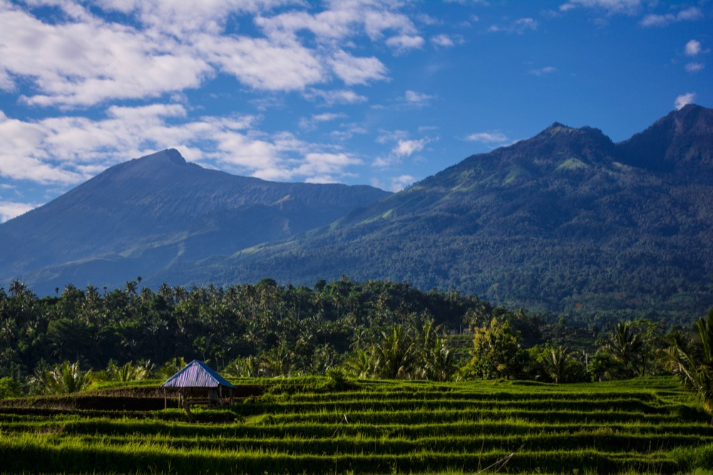 Rinjani Mountain Garden