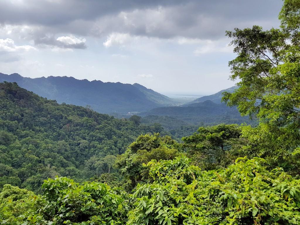 Dschungel-Lombok