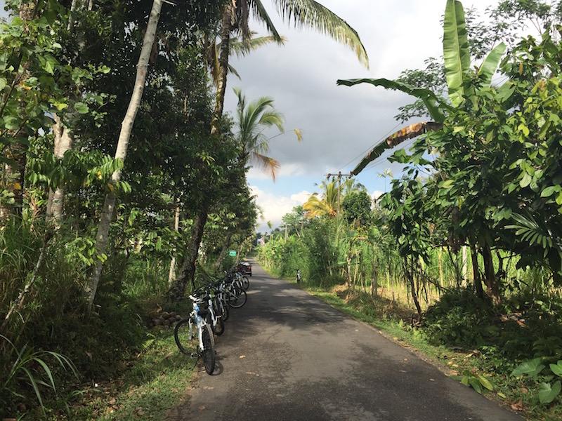 Bali Ausfluege fahrradtour-bali