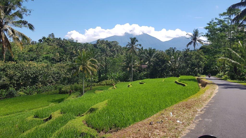 Gunung-Batukaru-Bali