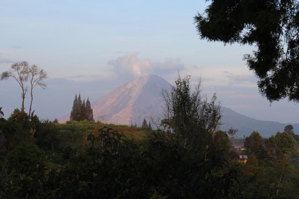 Der Gunung Sinabung am Morgen