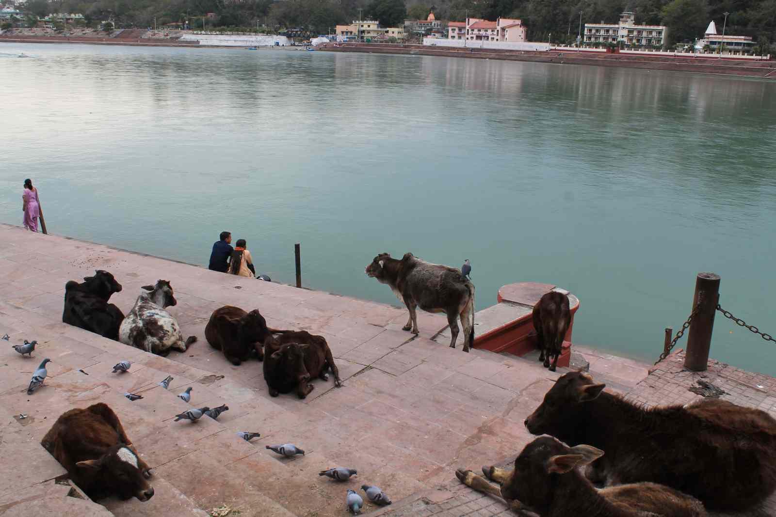 Indien-spirituelle-reise