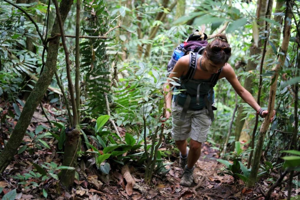 Indonesien-Bukit-Lawang-1