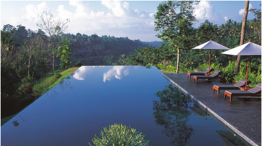 Infinite Pool Alila Ubud