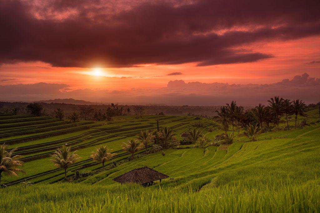 Jatiluwih-Bali