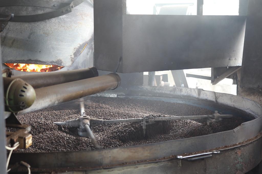 Kaffee-Robusta