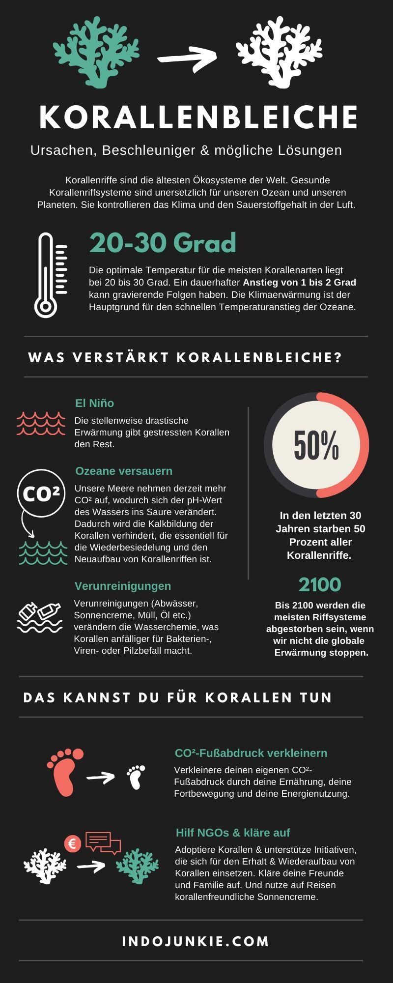Korallenbleiche-Infografik-1