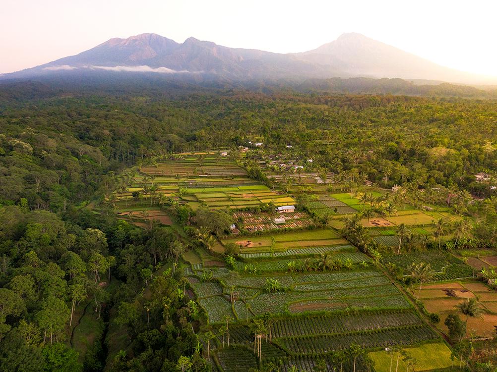 Lombok-Sehenswuerdigkeiten-Tetebatu