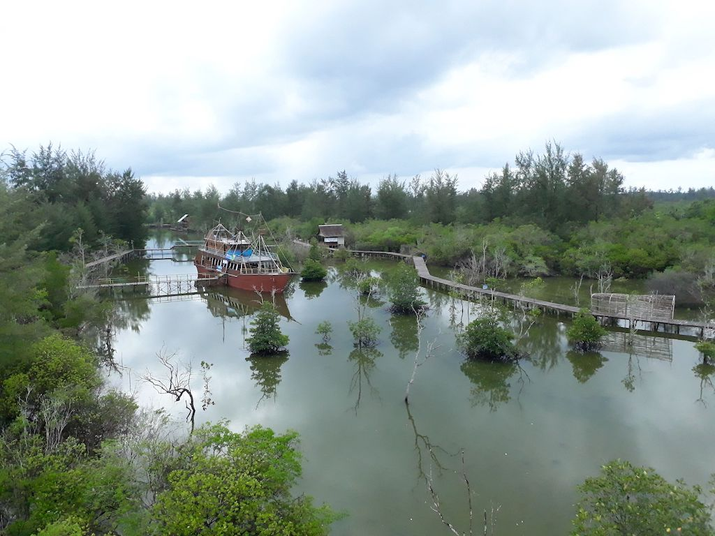 Mangrovenwald-Belitung