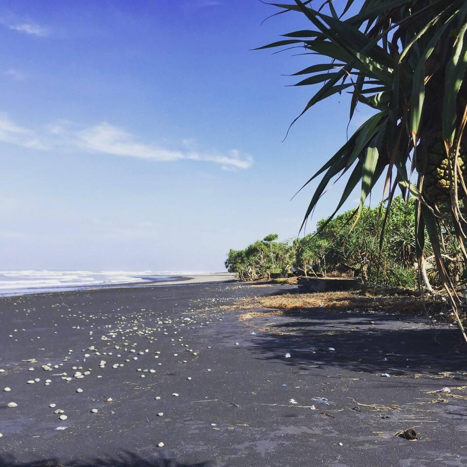 Medewi Surfcamp
