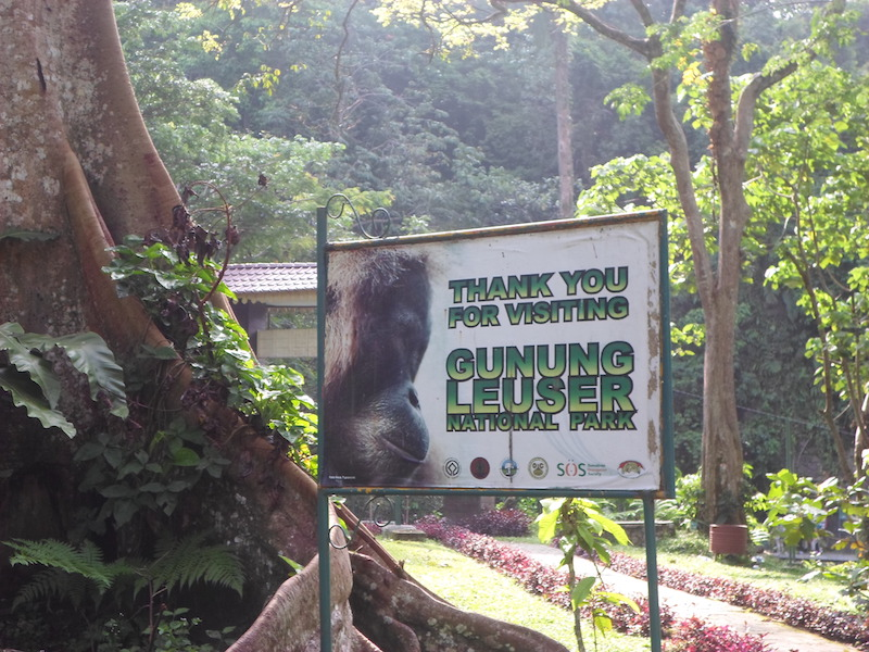 Nationalpark Leuser Sumatra