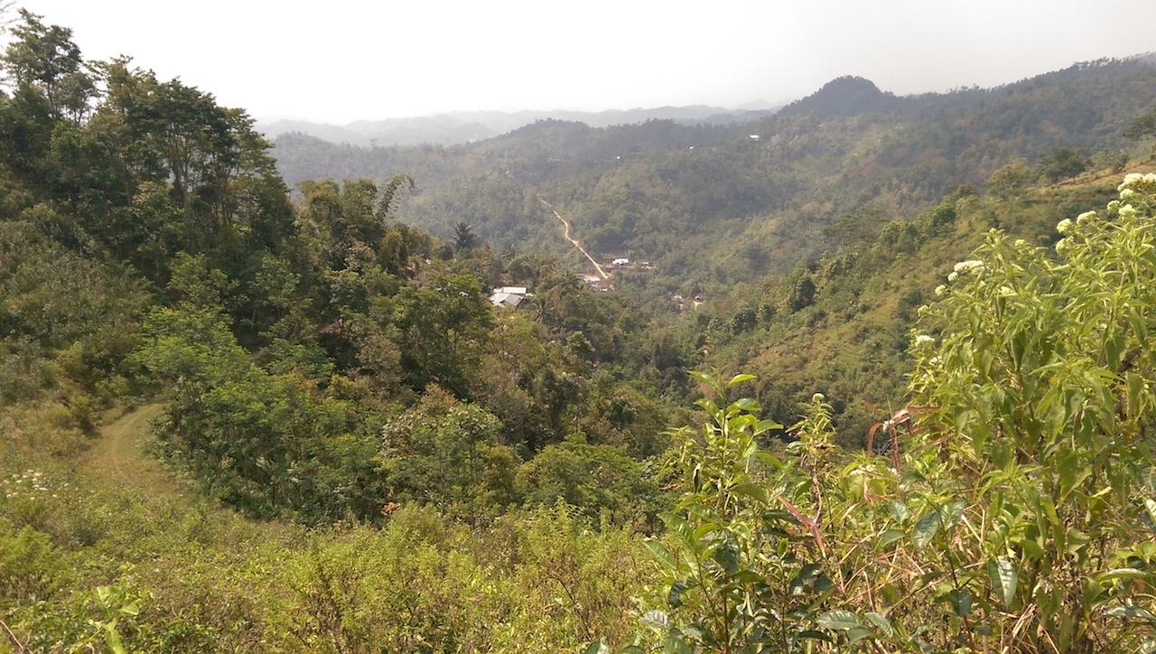 Natur Gunung Lawu