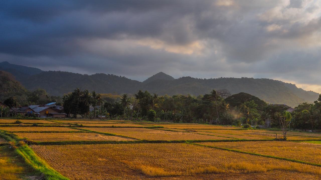 Pulau-Bawean