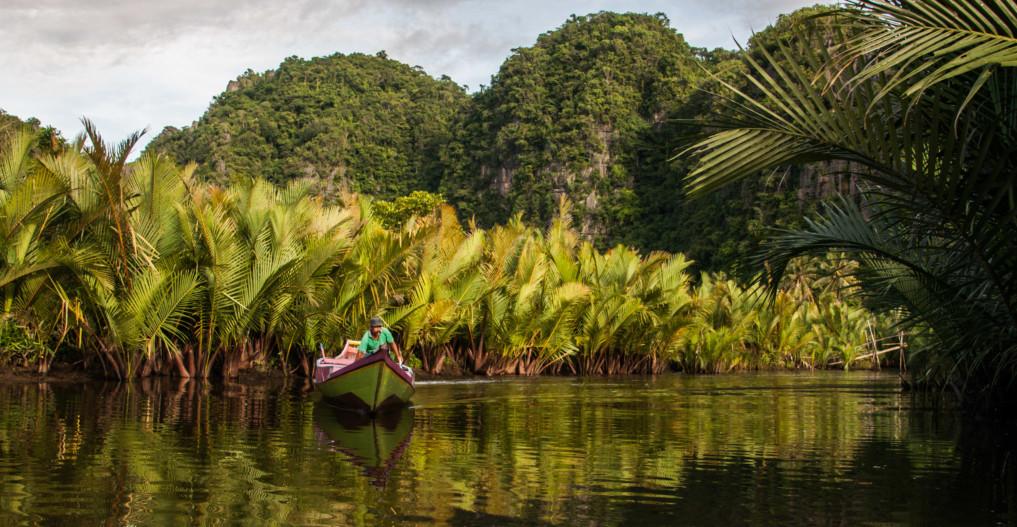 Boot durch den Dschungel