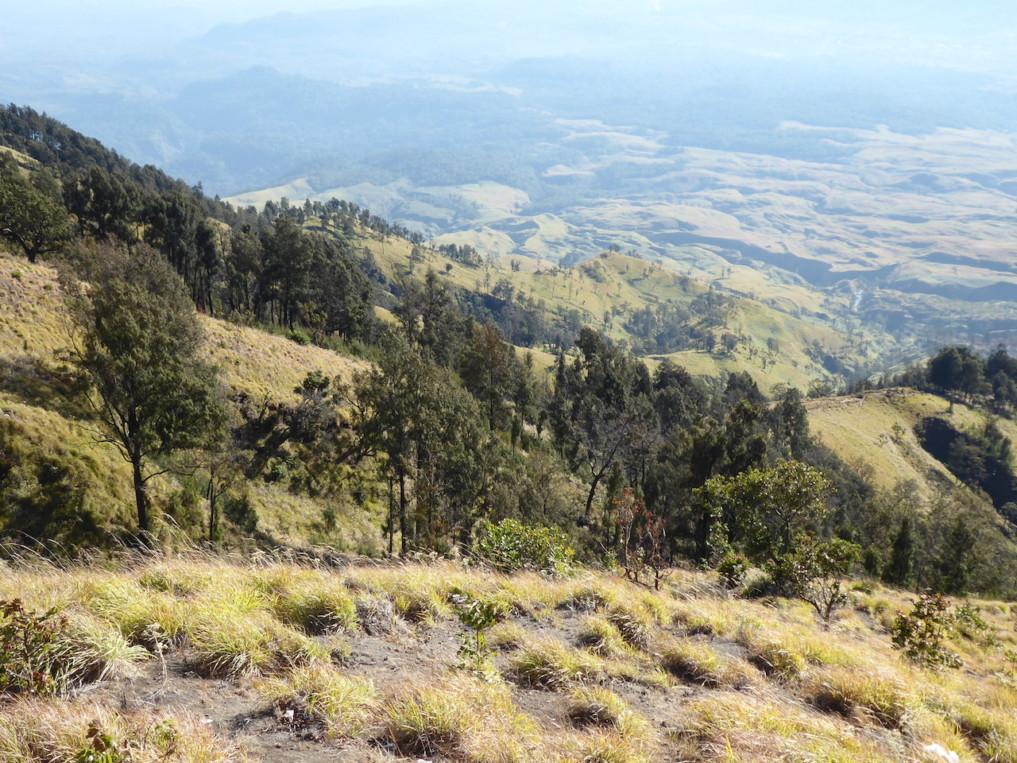 Rinjani-Lombok-Ausblick-2
