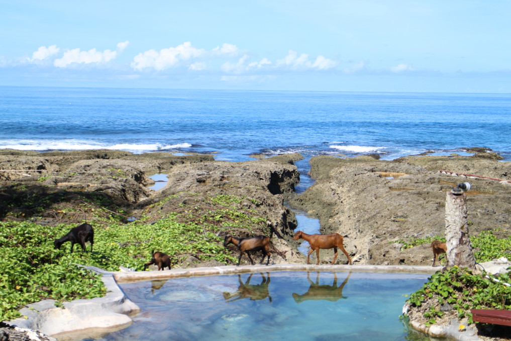 Simeulue Salzwasserpool