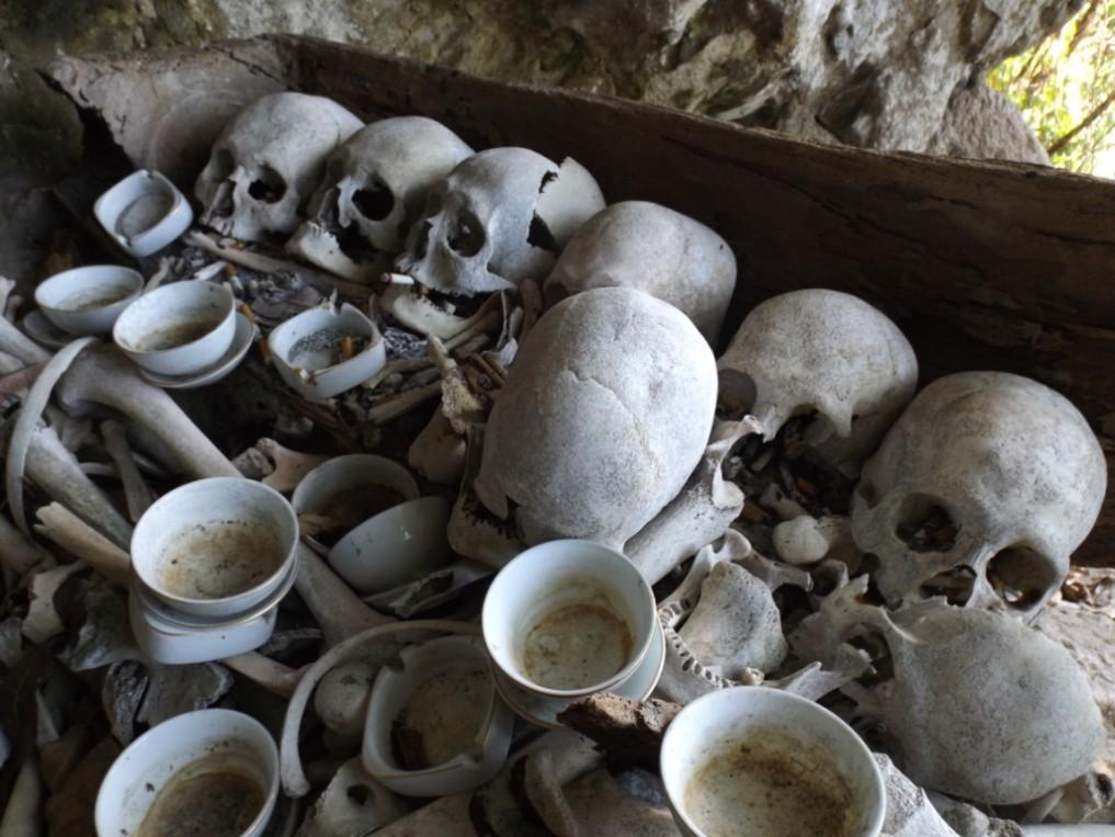 Skulls_Makalehi