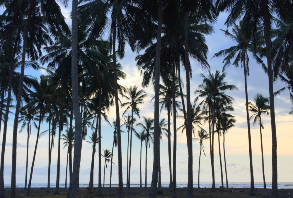 Surfen-Indonesien-Landschaft