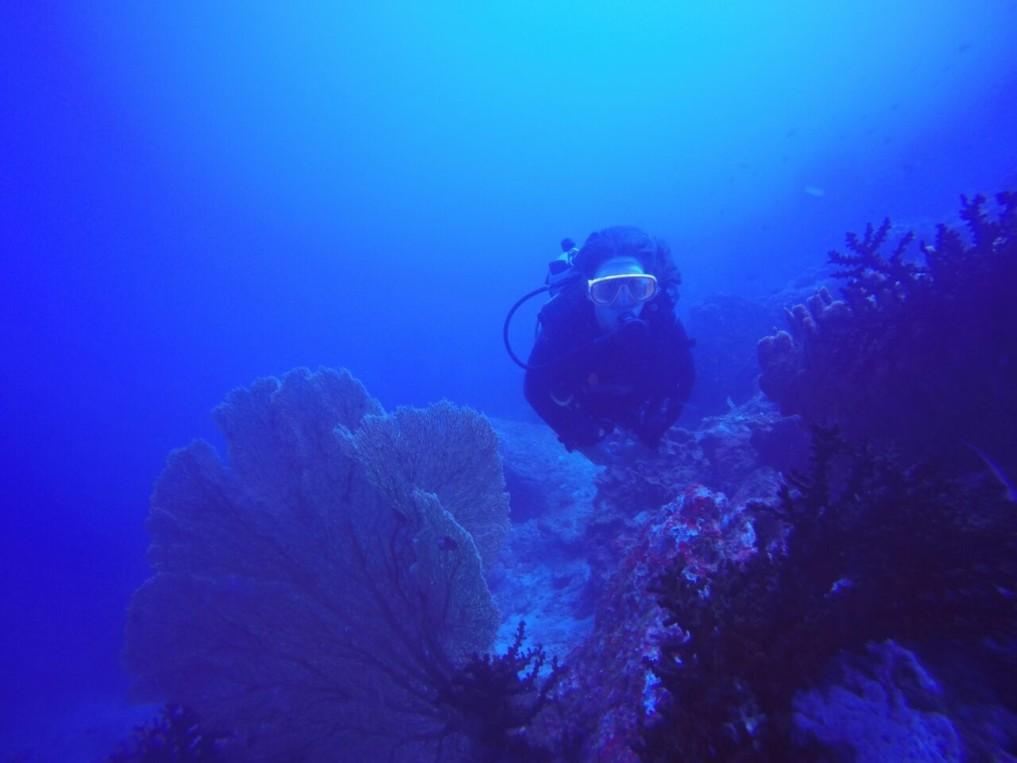 Tauchen Pulau Weh