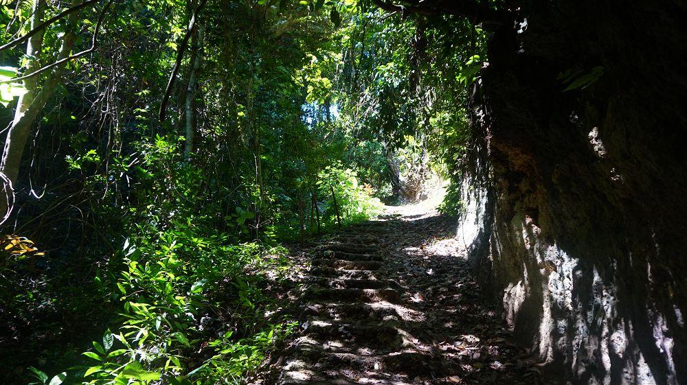 Tempeling Forest Nusa Penida