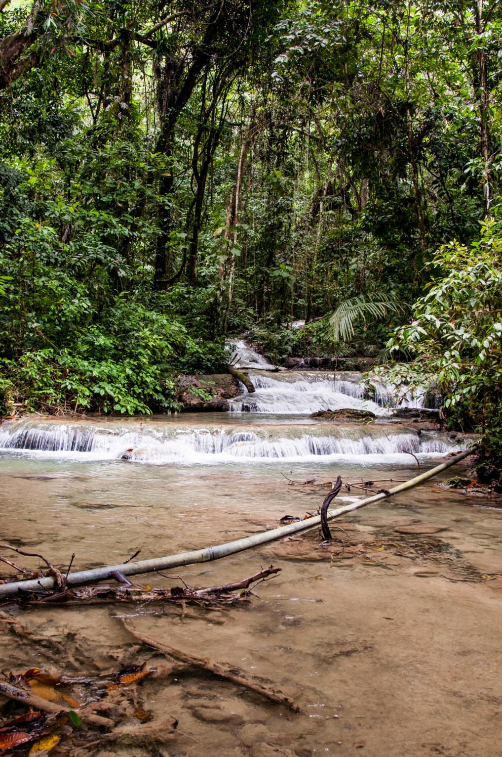 Fluss im Dschungel Indonesiens