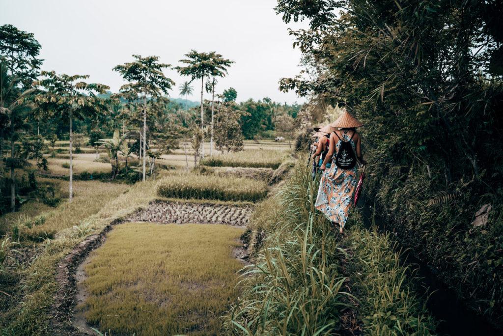 Tetebatu-Lombok