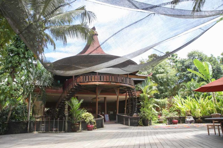 yoga-bali-The-Yoga-Barn
