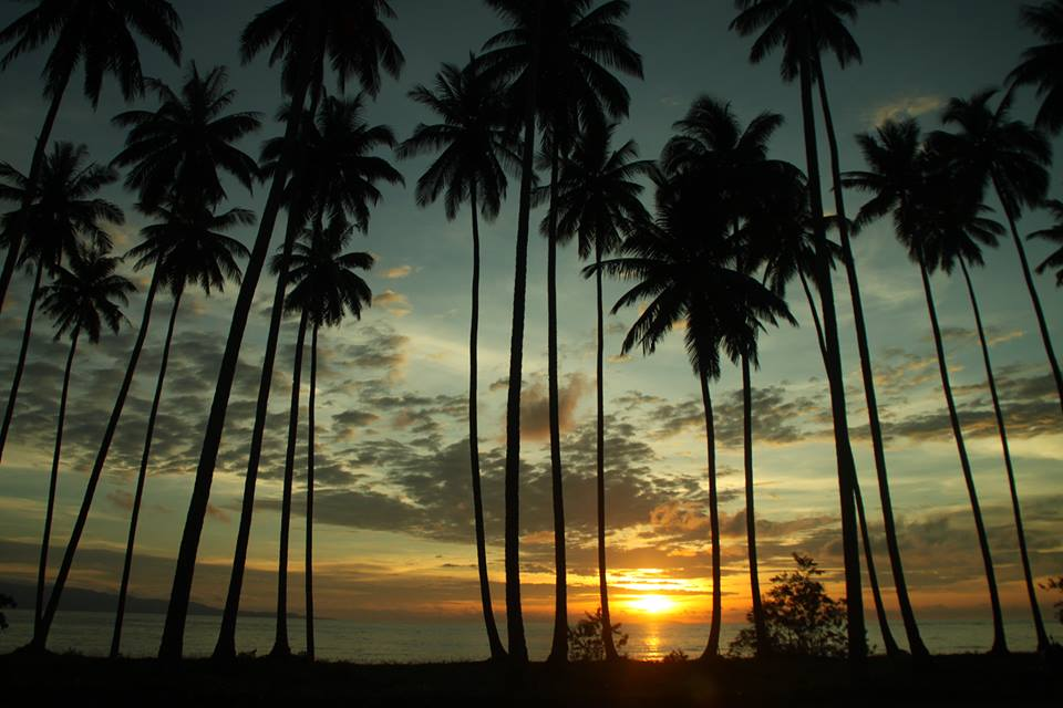 Tompe, Sulawesi by Fabi Sho