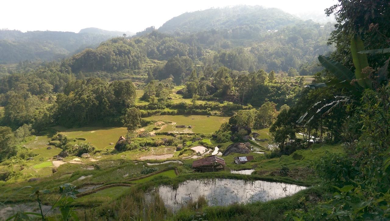 Trekking Toraja (3)