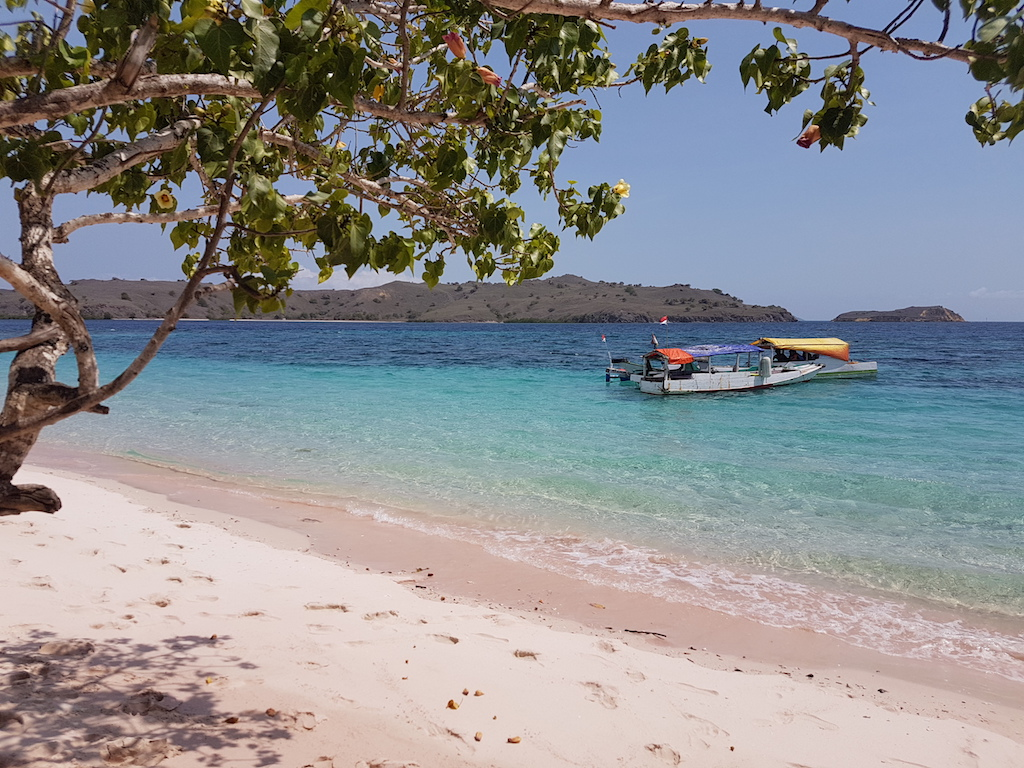 ausflug-komodo-padar-pink-beach-manta-point