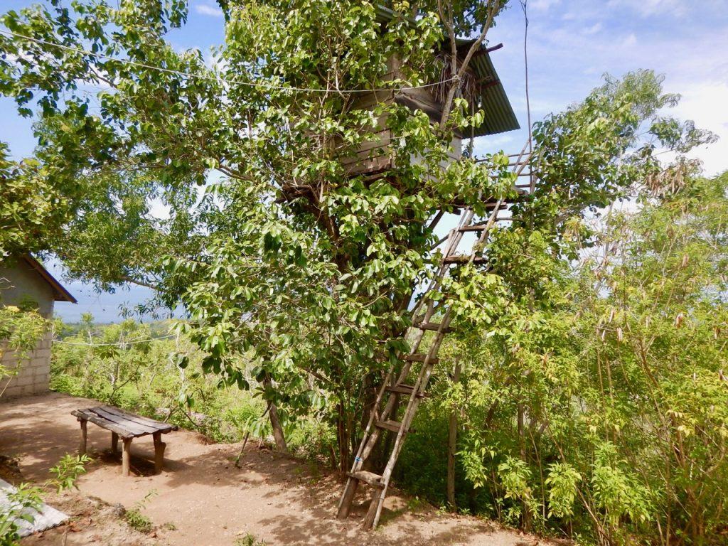 baumhaus-nusa-penida-bali-unterkunft