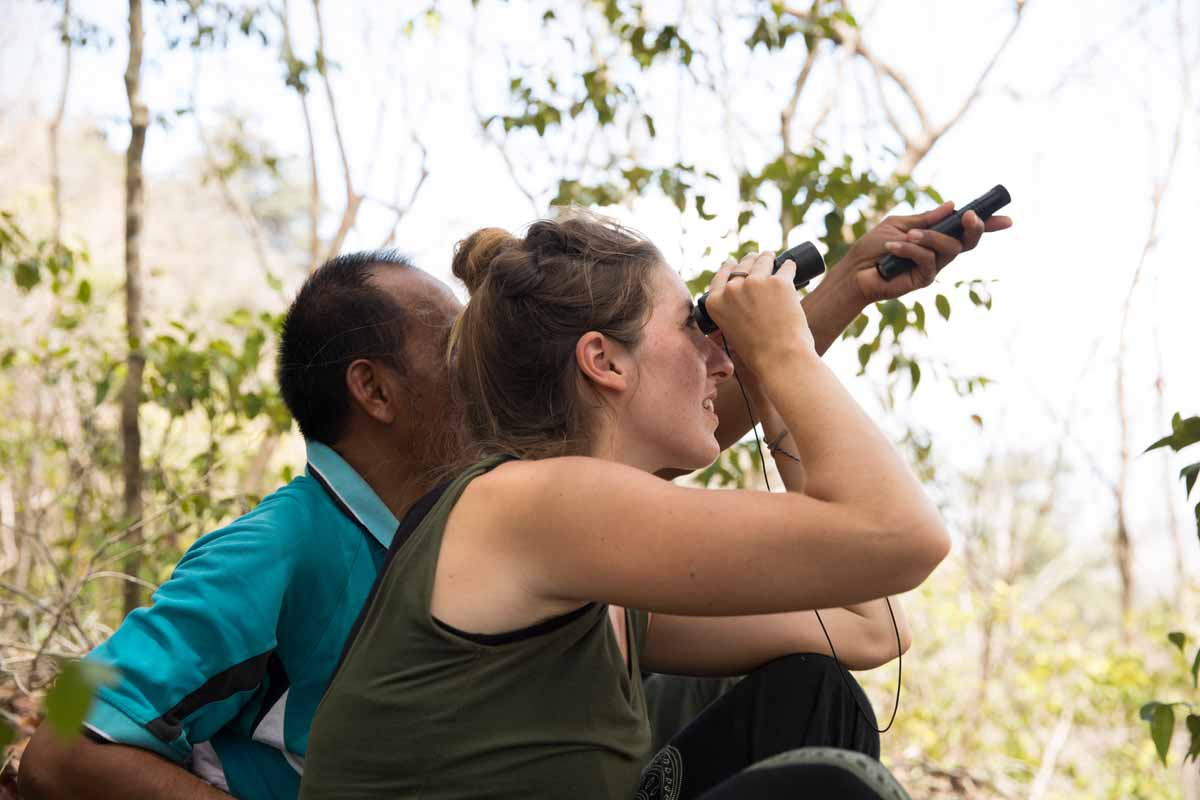 birdwatching-bali-barat-nationalpark