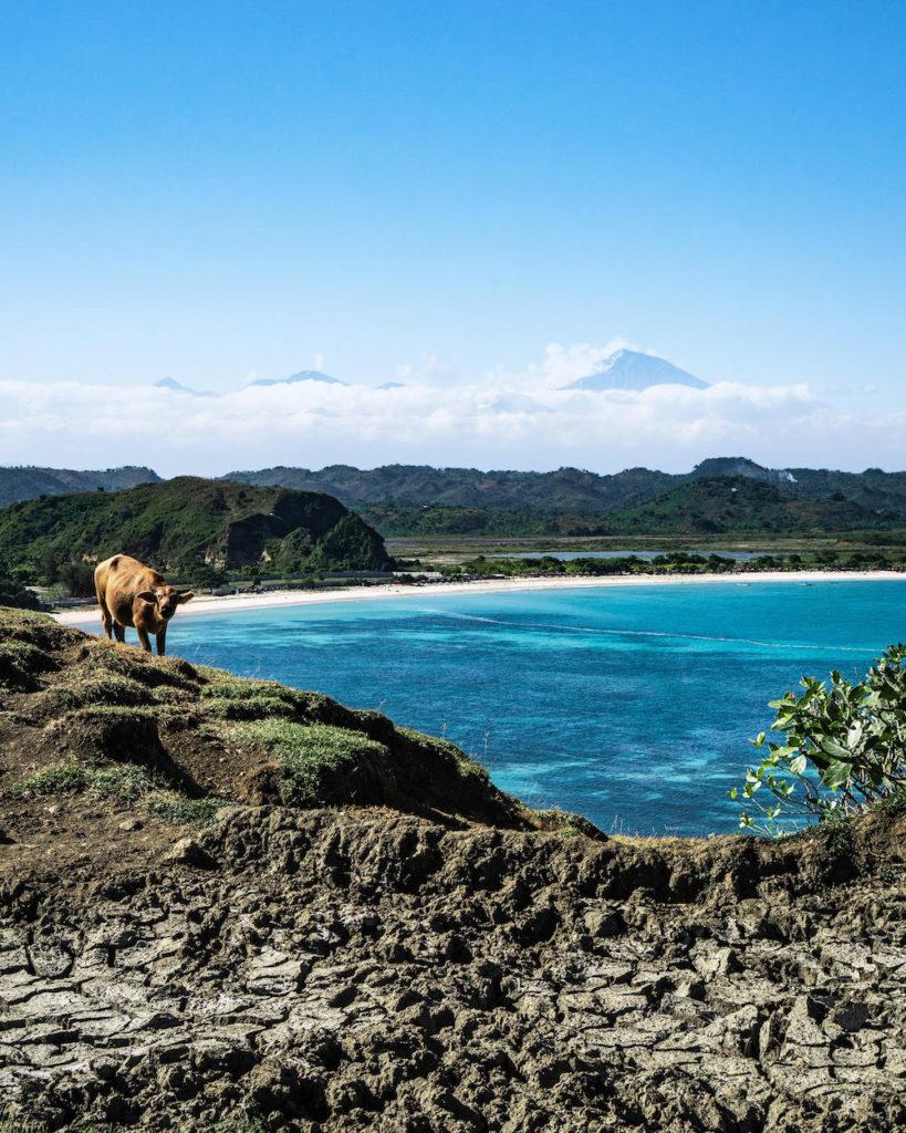 bukit-merese-kuta-lombok-aussicht
