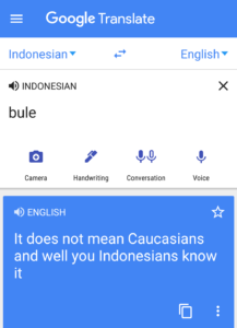bule-google-translate