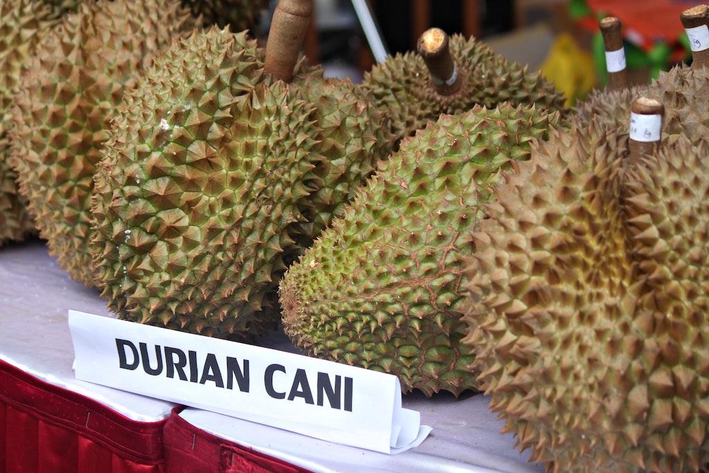 durian-frucht