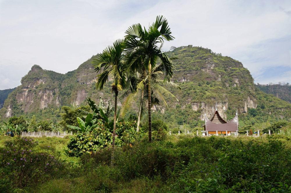 felsen-palmen-harau-valley