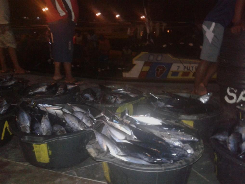 Fischmarkt Morotai