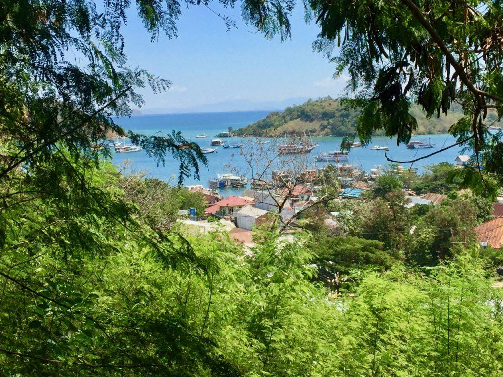 hotel-labuan-bajo-palulu-garden-homestay-garden-view