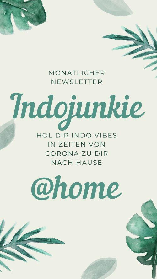 indojunkie-newsletter